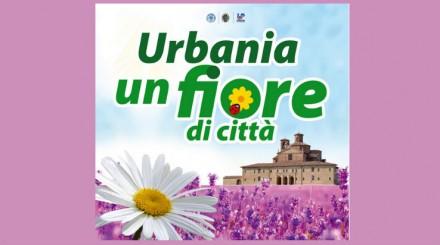 fiera fiori urban